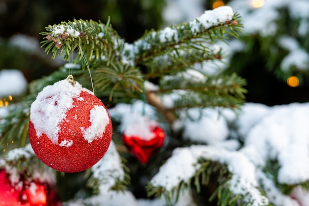 Decoraciones de corazón rojo en ramas de árboles de navidad cubiertas de nieve