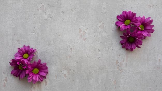 Decoraciones florales de espacio de copia