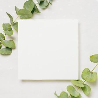 Deja ramitas en la esquina de la invitación de boda blanca contra el telón de fondo