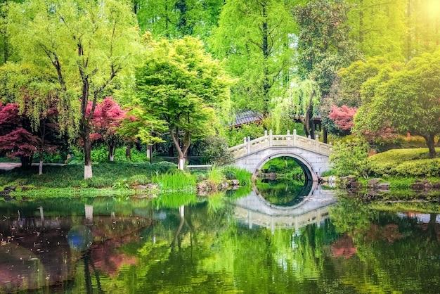 Dejar cambiar de color rojo en japón temple park en otoño de japón