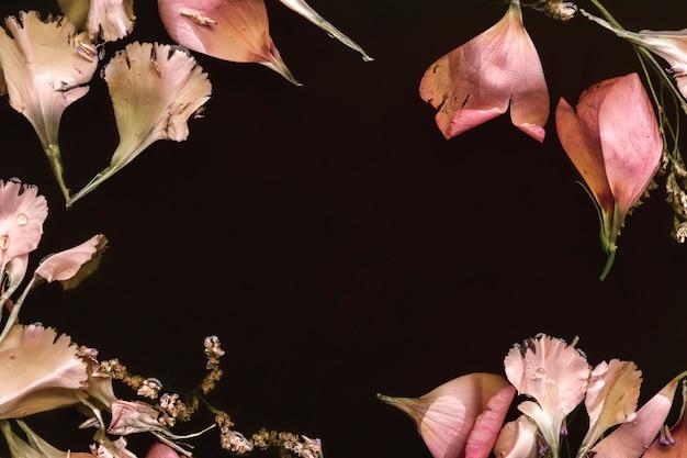 Delicadas flores rosadas en agua negra con espacio de copia
