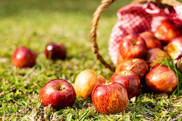 Deliciosas manzanas rojas en primer plano de la cesta de paja