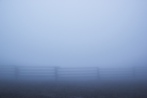Una densa niebla se asienta sobre la carretera de un pueblo.