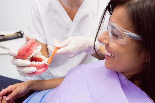 Dentista mostrando dientes modelo a paciente femenino
