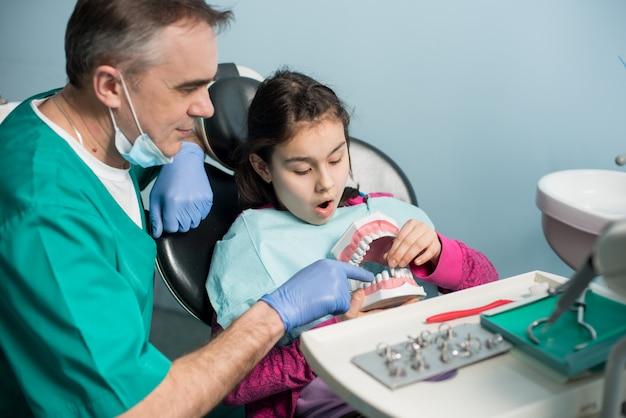 Dentista pediátrico que muestra a la niña en la silla del dentista modelo de mandíbula dental en la clínica dental.