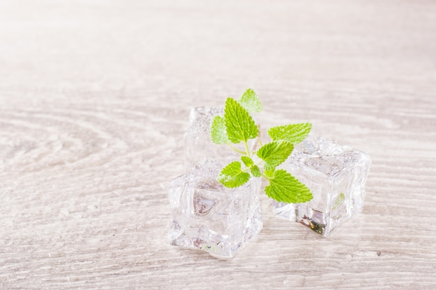 Derritiendo cubitos de hielo y hojas de menta fresca en una mesa de madera