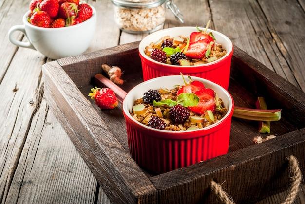 Desayuno saludable. crumble de avena y granola con ruibarbo, fresas y moras frescas, semillas y helado en tazones horneados, decorados con menta, sobre una mesa rústica de madera en una bandeja antigua, copyspace
