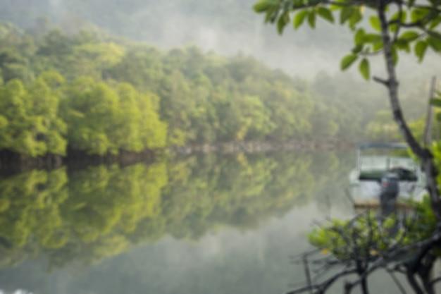 Desenfoque de bosque tropical de manglar con canal