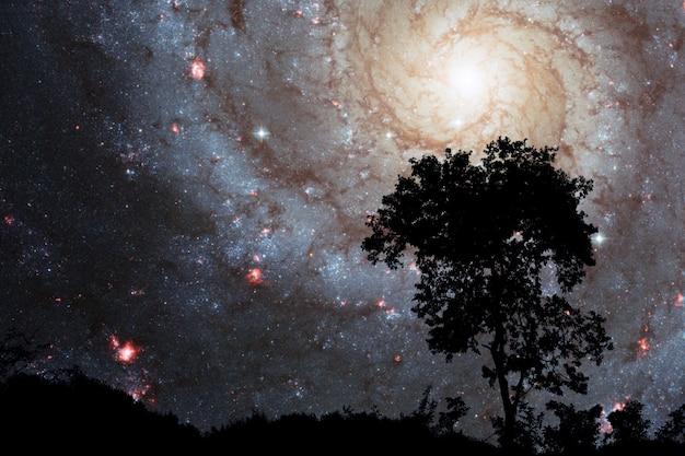 Desenfoque de la galaxia sprial en la nube de la noche puesta de sol cielo silueta árbol