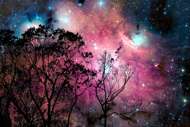 Desenfoque de la nebulosa galaxia en el cielo nocturno de nubes en el árbol