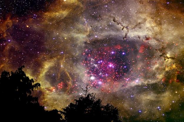 Desenfoque de nebulosa de galaxia de color dorado en la noche nube cielo silueta árbol seco