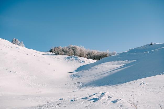 Desfiladero cubierto de nieve en las montañas bosque cubierto de nieve en un barranco en el norte de montenegro en el