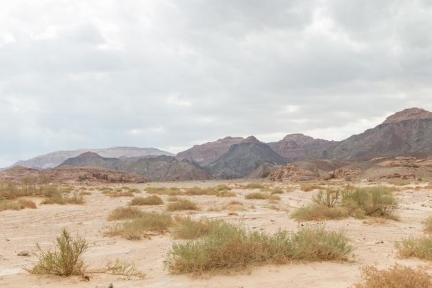 Desierto, montañas rojas, rocas y cielo nublado. egipto, la península del sinaí.