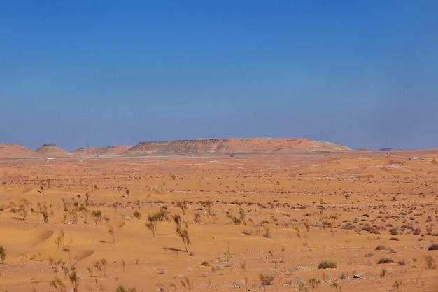 Desierto del sahara en el corazón de áfrica