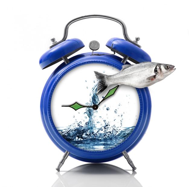 Despertador con dial splash en blanco