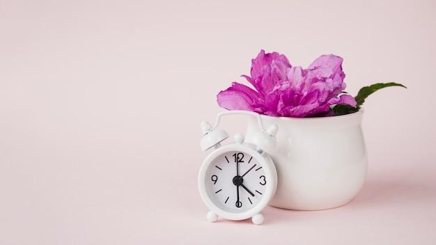 Despertador frente a la flor de peonía púrpura en el jarrón de cerámica con fondo coloreado