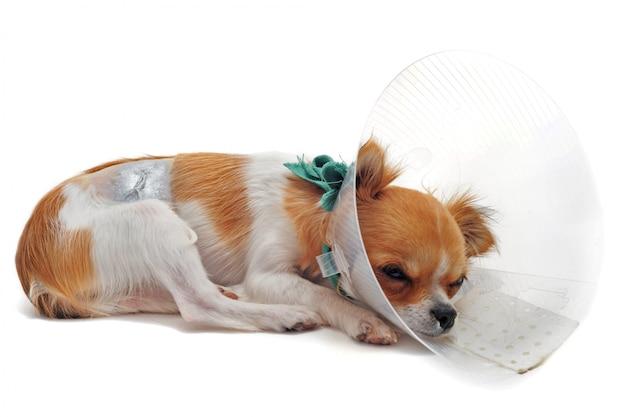 Después de una operación