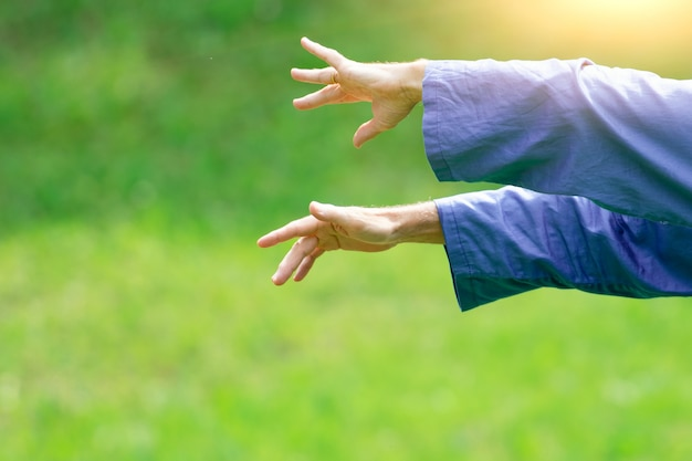 Detalle de las posiciones de las manos de un practicante de tai chi chuan al aire libre.
