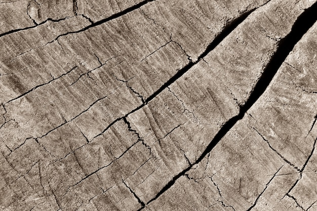 Detalle de la superficie de madera vieja para el fondo