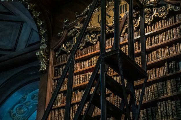 Detalles de estantería biblioteca nacional de austria