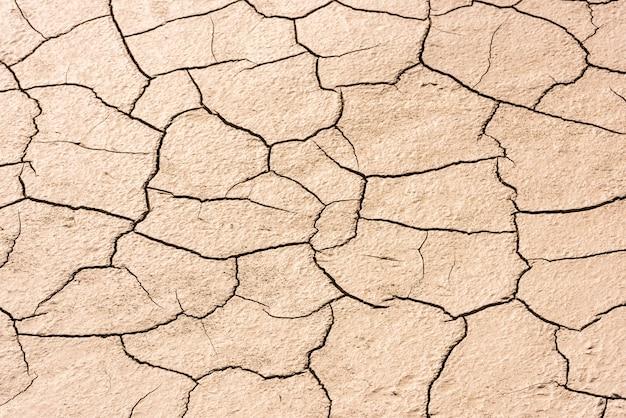 Detalles de un fondo de fondo marino agrietado seco
