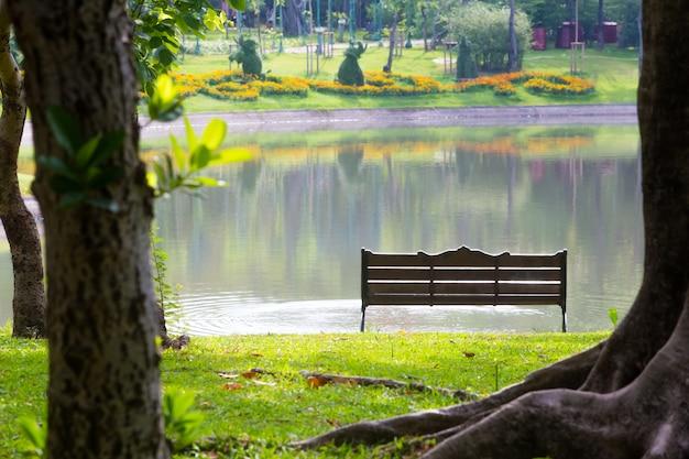 Detrás de la silla del parque, con árboles, césped y pantanos.