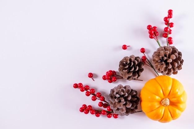 Día de acción de gracias u otoño composición decoración de calabazas, bayas rojas sobre un fondo blanco.