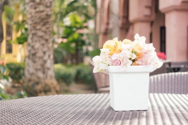Día flor rosada patio mediterráneo