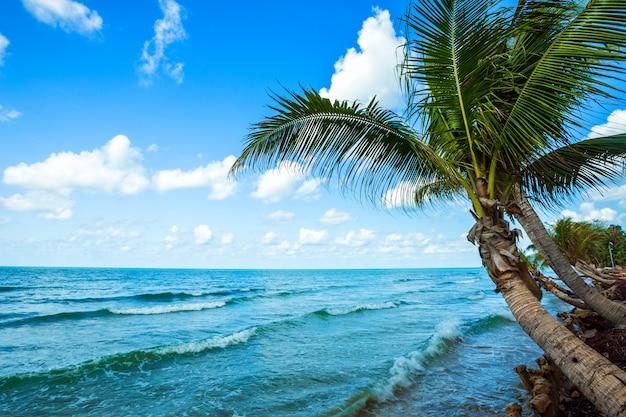 Día hermoso sobre el árbol de coco con el mar el horizonte en la playa del lao de chao del sombrero en chanthaburi tailandia.