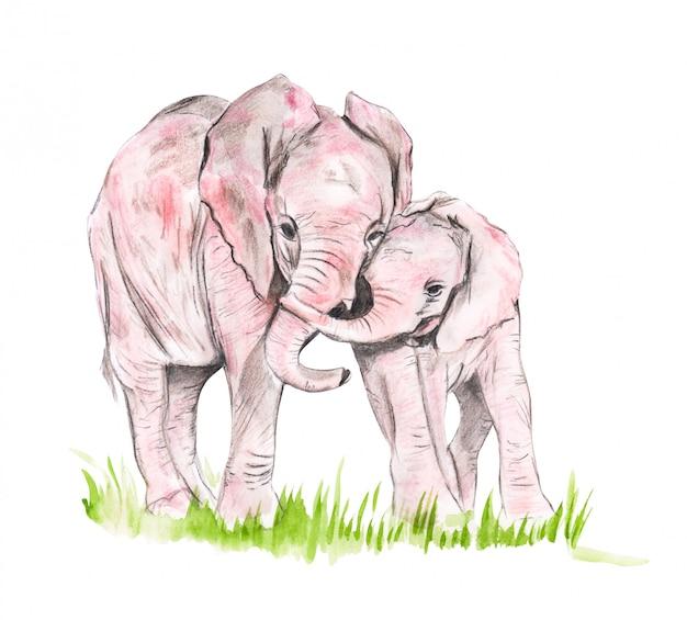 Dibujo de una familia de acuarelas de elefantes.
