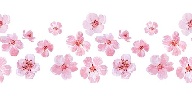 Dibujo de frontera transparente acuarela con ramas y flores de cerezo