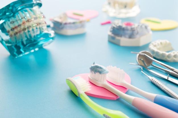 Dientes demostrativos modelo de variedades de ortodoncia bracket o corsé.