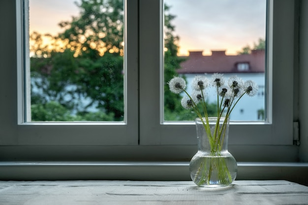 Dientes de león blancos en jarrón de cristal en la ventana