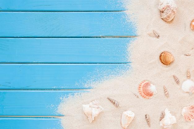 Diferentes conchas de mar con arena en la mesa