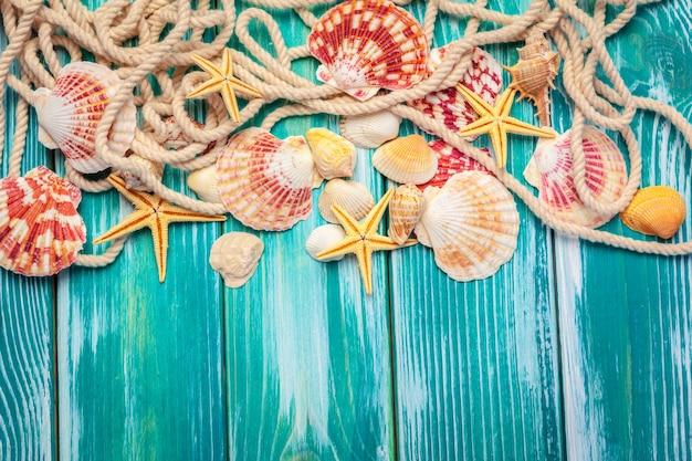 Diferentes conchas de mar sobre fondo de madera de color