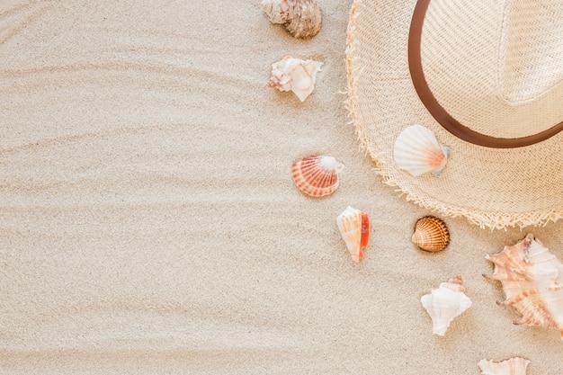 Diferentes conchas de mar con sombrero de paja en la arena.
