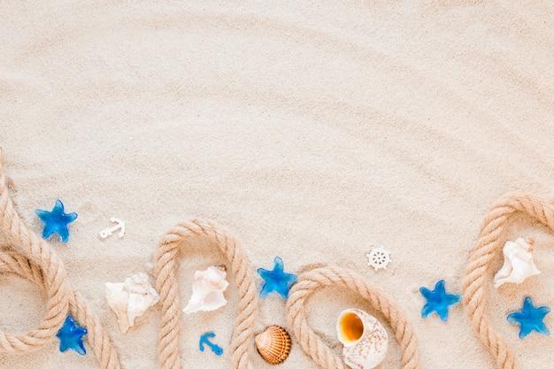 Diferentes conchas marinas con cuerda náutica sobre arena.