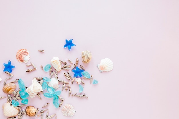 Diferentes conchas marinas con piedras azules.