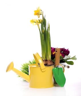 Diferentes cosas de jardinería