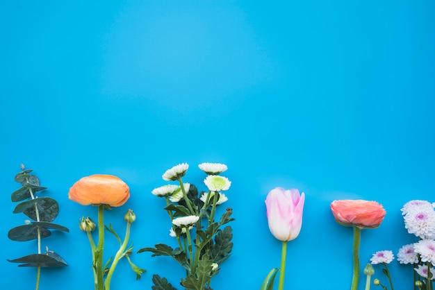 Diferentes flores de colores en tallos.