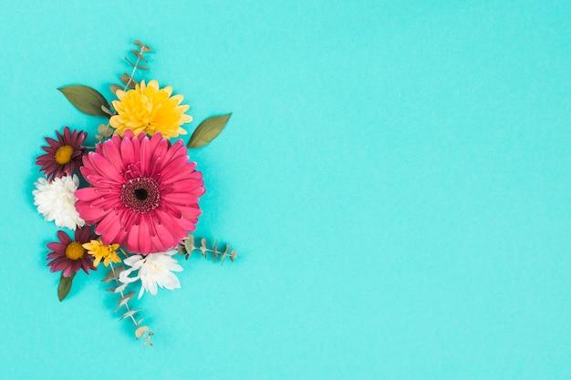 Diferentes flores con hojas en mesa azul