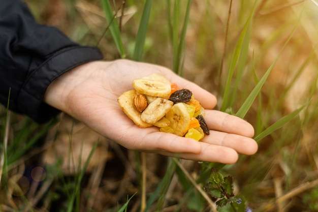 Diferentes frutos secos, nueces en una mano femenina sobre un fondo de hierba verde. refrigerio durante la caminata, caminata. comida vegetariana saludable.