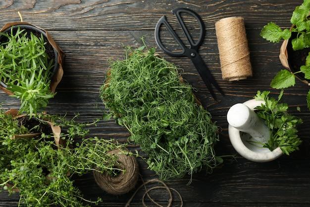 Diferentes hierbas sobre fondo de madera