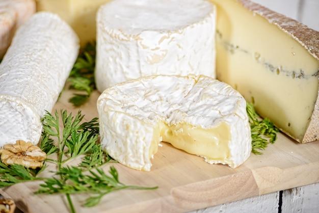 Diferentes quesos franceses