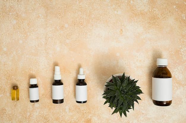 Diferentes tipos de botellas de aceite esencial con planta de maceta en el fondo con textura