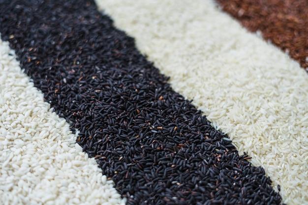 Diferentes tipos de textura de arroz para el fondo.