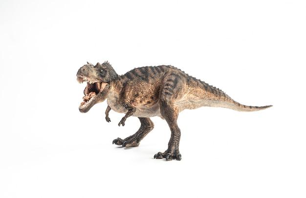 Dinosaurio gorgosaurus