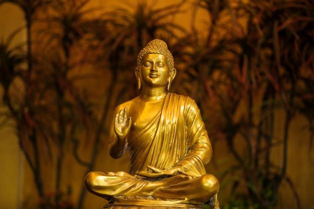 Dios goutama buddha