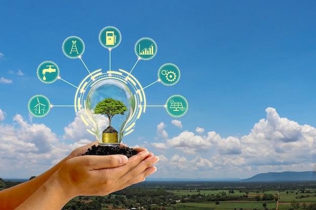 Diseño digital de un árbol dentro de una bombilla y diferentes iconos a su alrededor, sostenidos por las manos con un fondo de cielo azul.