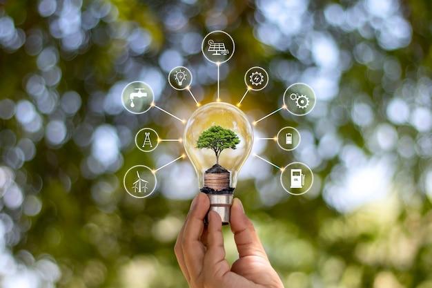 Diseño digital de una bombilla con el lado de un árbol sostenido por una mano.